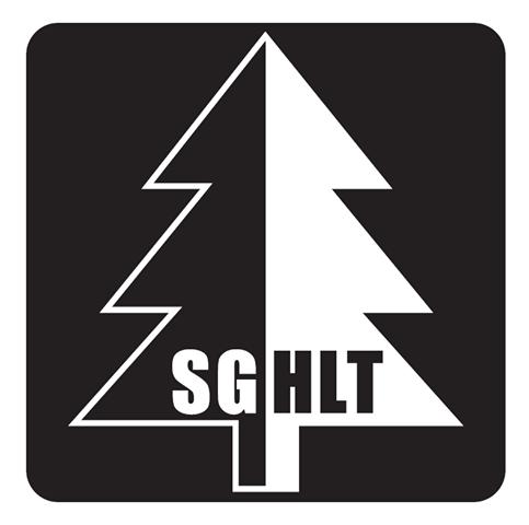 TV Triberg Handball