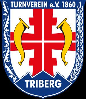 TVT Handball